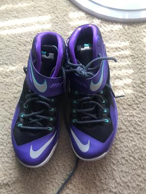 Lebron James Shoe for sale in US, US