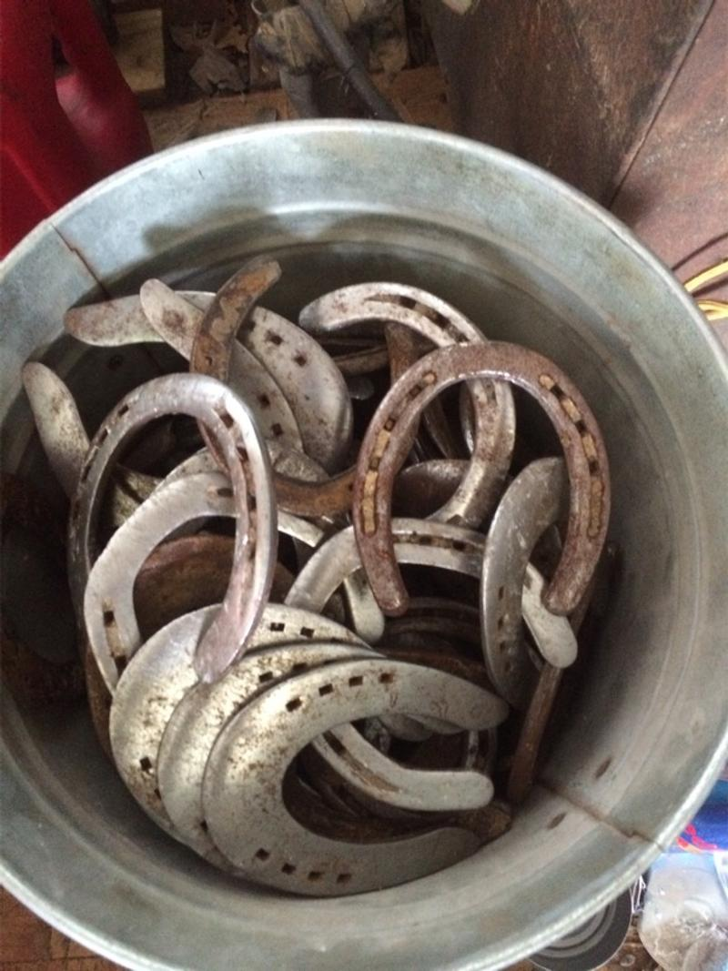 Used horse shoes for sale in