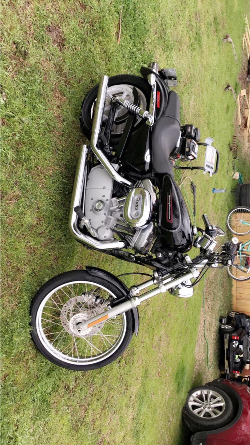 Photo 2009 Harley Davidson xl883 custom